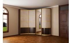 Какие существуют особенности радиусных шкафов